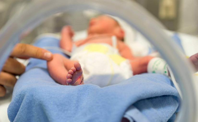 Недоношенные дети: теория и практика. 6 уроков для родителей